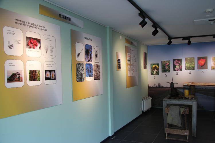 Het begin van de expositie Rariteiten in het groen