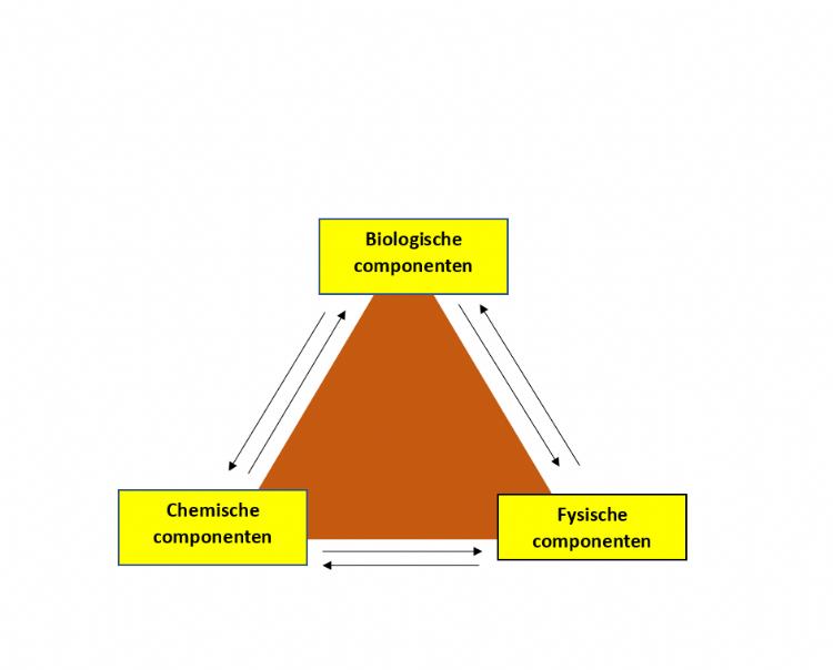 Fig. 1. Biologische, fysische en chemische componenten van de bodem