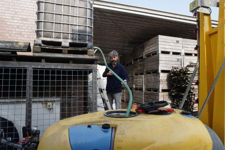 Appelbloesemkever is een geduchte plaag op het bedrijf. Van den Elzen spuit ertegen met een insecticide op basis van koolzaadolie.