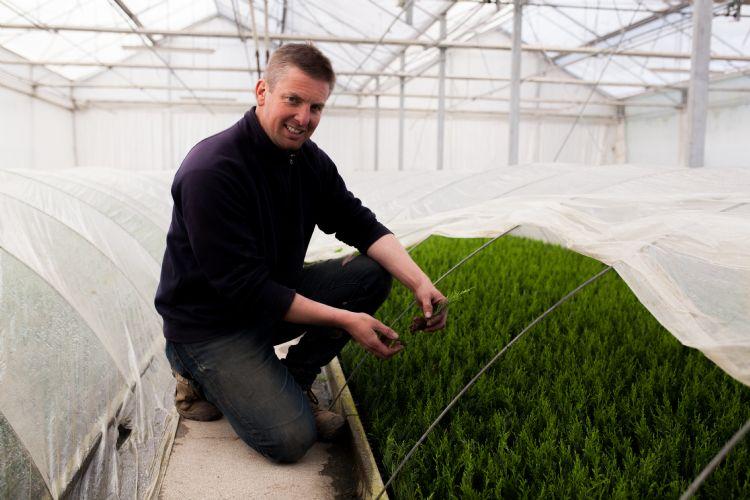 Kristof Van der Haegen is gespecialiseerd in coniferen