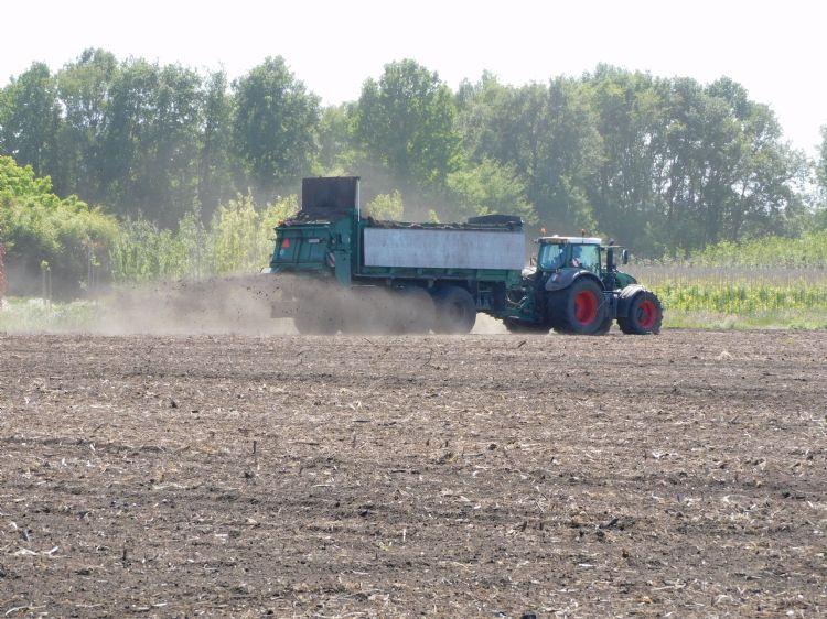 De compostverdeling. Boomkwekerij Vlemminx is deelnemer aan het project Bodem en water De Kempen en aan het ZLTO-project BodemUp. DLF is de trouwe leverancier van groenbemesters voor deze projecten. Foto: Esther Hessel/Hessel Marketing & Communicatie