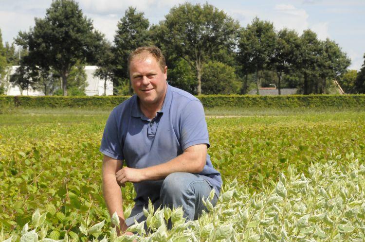 Henk de Bie van boomkwekerij Richard de Bie