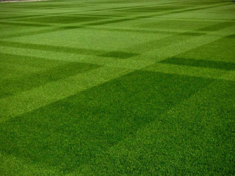 Er gaat niets boven een mooi patroon in de grasmat.