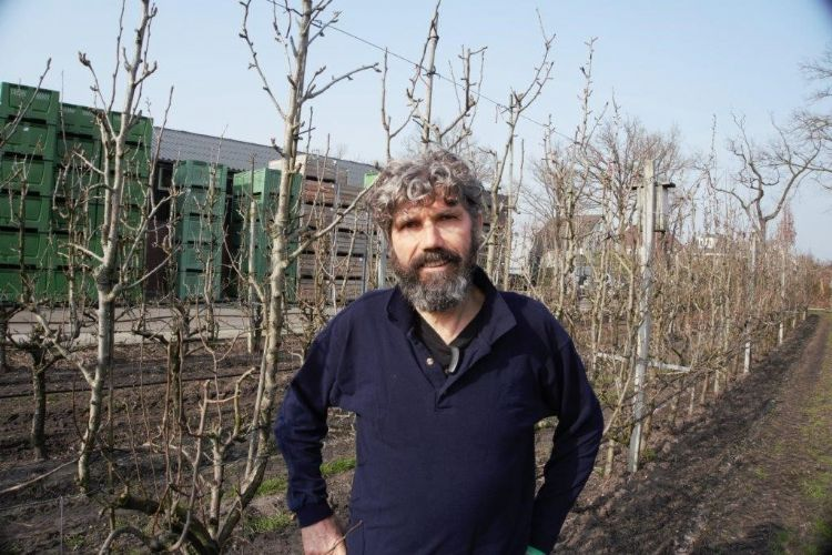 Harrie van den Elzen is biologisch-dynamisch fruitteler in Zeeland (NB). Hij teelt 5 hectare appel en 5 hectare peer