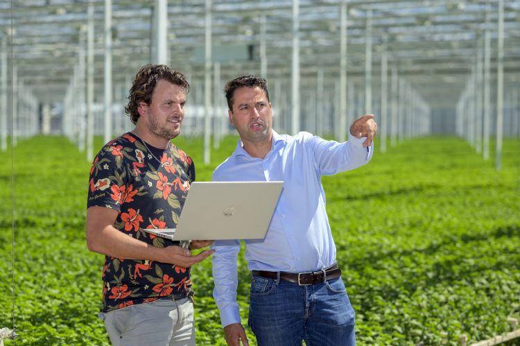 Jasper van Diemen (rechts) en Sander Middelburg bij chrysantenkwekerij Leen Middelburg