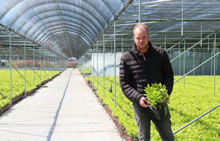David Moerings van Moerings Skimmia gebruikt sinds kort een registratieprogramma om zijn gewasbeschermingsmiddelen in te registreren